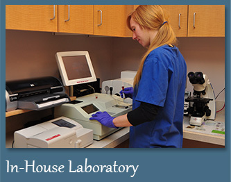 In-House Laboratory